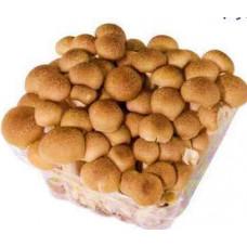 champignon Shimeji marron 150g